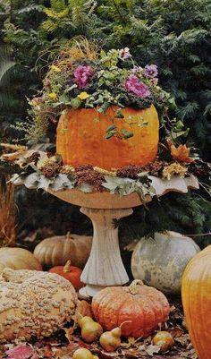 festive pumpkin centerpiece
