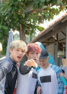 101 Adorable Moments of Wanna One on Thailand Trip Law Of The Jungle, Ong Seung Woo, Miss U So Much, Thing 1, My Destiny, Kim Jaehwan, Ha Sungwoon, My Youth, Ji Sung