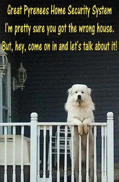 PYR Home Security