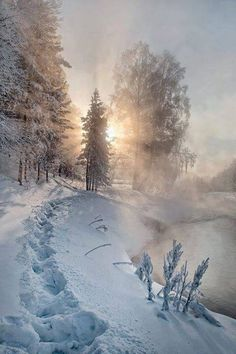 Winter light