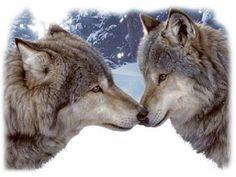 Muzzle Nuzzle Wolf Kiss Wolves T SHIRT  Item no. 223b by AlwaysInStitchesCo on Etsy