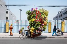 The Whimsical Circus of China's Bike Peddlers
