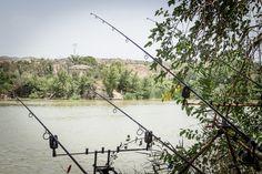 A las orillas del Ebro ...
