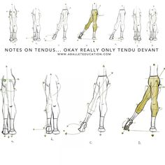 "A Ballet Education on Instagram: ""NEW POST: notes on tendus #tendu…"
