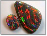 top black opal harlequin pattern