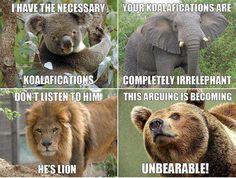 Funny Animal Pun Meme