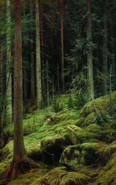 'Thicket' oil painting by Ivan Shishkin, 1881 Tree Forest, Dark Forest, Forest Art, Magical Forest, Wow Art, Norman Rockwell, Landscape Paintings, Illustration, Woodland