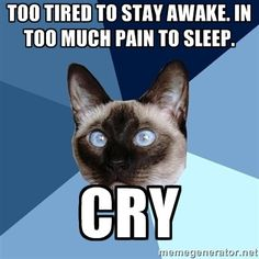 """Chronic Illness Cat meme》[Image: 6-piece blue colored background with a Siamese cat.Text reads: Top:]** """"Too tired to stay awake. Too much pain to sleep,  CRY!""""》 FIBRO"""