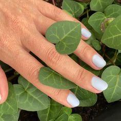 SUMMER NAILS Nailartist: @orsy_laszlo #nailsofinstagram #nails #nails💅 #nailsoftheday #nailsart #whitenails #nails2inspire #nailsonfleek #nailslove #nailsinspiration #nailsfashion Nailed It, Nails On Fleek, White Nails, Nails Inspiration, Summer Nails, Gel Nails, Plant Leaves, Nail Art, White Nail Beds