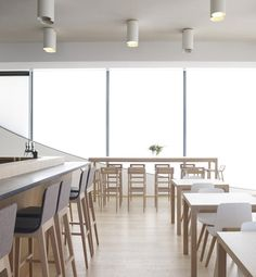 Laia and Kimua stools, Kuskoa chairs and Laia tables furnish the cafeteria of the Cite de l'Ocean et du Surf in Biarritz Plastic Chair Design, Surf, Cafe Furniture, Dinning Chairs, Restaurant Bar, Solid Wood, Living Spaces, Gallery, Stools