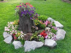 Container Gardening For Beginners Tree Stump For Garden - Tree Stump For Garden Art. you can use tree stumps in your garden as planters and they will give you a special charm that everyone will be admired. Garden Mats, Diy Herb Garden, Herb Garden Design, Garden Yard Ideas, Garden Projects, Home Landscaping, Front Yard Landscaping, Landscaping Borders, Tree Stump Planter