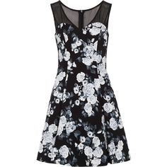 Zibi London Floral Skater Dress ($62) ❤ liked on Polyvore featuring dresses, black, women, black dress, floral skater dress, puffy dresses, skater dress and black collared dress