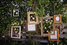 vintage frames hanging from trees