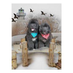 Newfoundland Dog Art   Newfoundland Dog Paintings & Framed Artwork ...