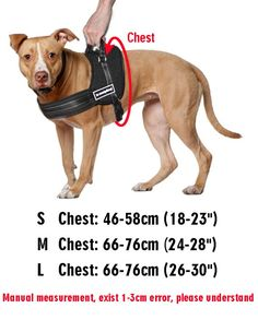 Our service animal vest is loaded with highly reflective stitching and 2 Bright Service Dog patchesBuilt to Last: Woven of tough nylon/polyester, Sturdy handle, durable D-ring to hold leash or ID t…