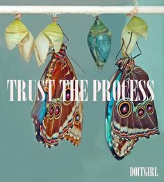Trust the Process | craniobalance