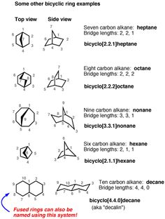 "There are 3 main ways to arrange bicyclic rings: fused, bridged bicyclic, and spiro. Here we'll focus on ""bridged bicyclic"" compounds & how to name them. Organic Synthesis, Study Chemistry, Girly Drawings, Organic Chemistry, Biochemistry, Knife Making, Science And Nature, Bicycles, Infographics"