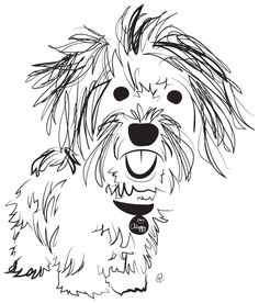 Havanese - Charity Pups raises awareness and dollars for a different animal-related non-profit each month through dog illustrations. Animal Sketches, Animal Drawings, Art Sketches, Bichon Havanais, Havanese Puppies, Scribble Art, Dog Quilts, Doodle Dog, Dog Crafts