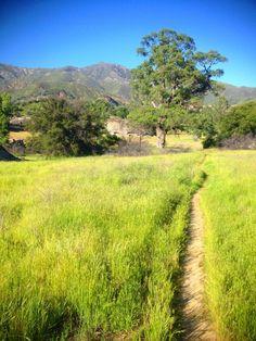 Sunday Nature Picture - Santa Lucia peak trailhead in the Indians Valley, east of Big Sur California #SummerStartsNow