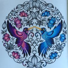 Bird Art Coloring Books Johanna Basford Dibujo Drawings Crayon Vintage Pages Artwork