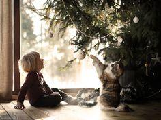 under the christmas tree.. by Elena Shumilova