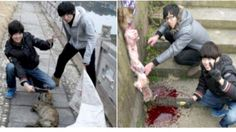 This extremely shocking case took the world by storm. Two Chinese teens viciously destroyed a stray dog, posed for photos whi...