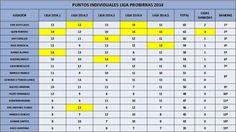 Puntuación Individual Final 2014