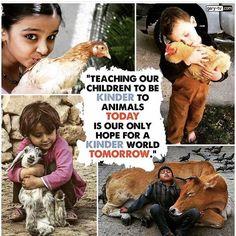 Teach 'em young. Friends Not Food!