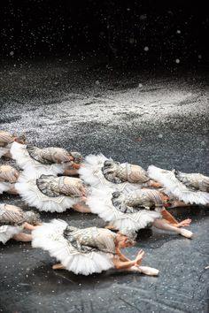 Paris Opera corps de ballet in Nureyev's The Nutcracker | Photo © Julien Benhamou
