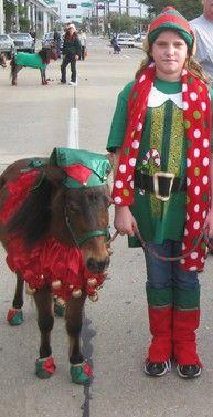 Ladybug Costume for Horse Pony or Miniature Horse Lady Bug   Mini Horse Costume