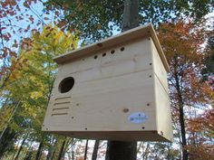 http://www.jcswildlife.com/owl-houses-bat-houses/barn-owl-nest-box-large-house-hand-crafted-in-usa/ Barn Owl Nest box Large House Hand crafted in USA