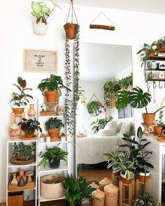 Bedroom Plants Decor, House Plants Decor, Bedroom Themes, Bedroom Ideas, Bedroom Inspo, Bedroom Inspiration, Décoration Urban Jungle, Deco Jungle, Jungle Bedroom