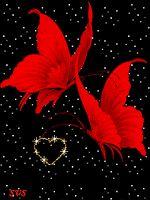 Two beautiful butterflies roming through beautie Apple Logo Wallpaper Iphone, Flower Phone Wallpaper, Butterfly Wallpaper, Love Wallpaper, Wallpaper Backgrounds, Butterfly Logo, Butterfly Wall Art, Pink Butterfly, Beautiful Flowers Wallpapers