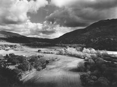 Brett Weston | Carmel Valley, 1949 | Discover and Shop Museum Art Prints | 1000Museums