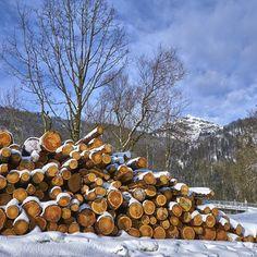 Bildergebnis für hagertal Klausenberg Berg, Firewood, Texture, Crafts, Surface Finish, Woodburning, Manualidades, Handmade Crafts, Craft