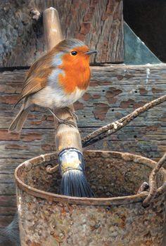 Robin by Andrew Hutchinson All Birds, Cute Birds, Pretty Birds, Little Birds, Beautiful Birds, Bird Drawings, Animal Drawings, Robin Bird, Tier Fotos