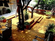 tree as focal point multi level deck - Google Search