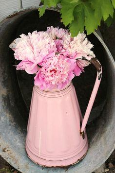 beautiful.quenalbertini: Broc rose