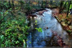 """""""Unser"""" Bach Country Roads, River, Outdoor, Water, Outdoors, Outdoor Games, The Great Outdoors, Rivers"""