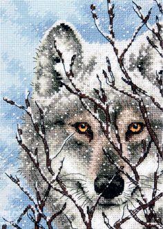 """Скачать Вышивка """"Wolf"""" gratis. А также другие схемы вышивок в разделах: , Dimensioni, Inverno, Predators"""