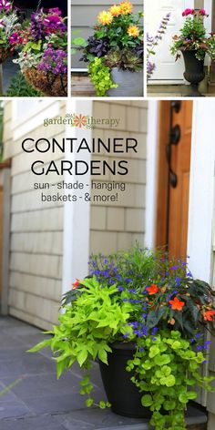 Container garden inspiration gallery for sun, shade, hanging baskets, and more