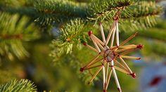 #COP21 : Comment préparer un #Noël #écolo-compatible ?