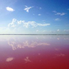 Amazing Pink Lagoon in Mexico – Fubiz Media