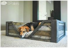 DIY Dog Bed Made From Pallets