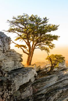 Hanging Rock State Park  - top of the hanging rock, exquisite view but very dangerous if you are not paying attention or with small children.