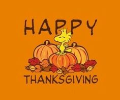 Thanksgiving greetings to all my friends & followers!!