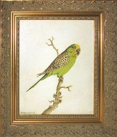 gold framed bird prints - Google Search