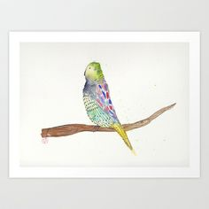 Budgie Art Print by Carmie - $15.00