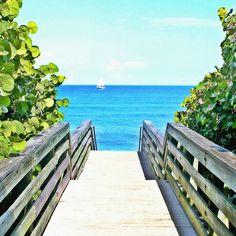 A walkway to heaven in Jupiter, FL.