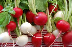 فوائد الفجل الاحمر والابيض، 10 فوائد مذهلة ستجعلك تأكله يومياً!